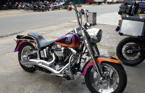 Sale HD Fatboy Evo