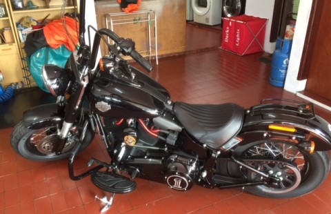 2014 Harley FLS Softail Slim